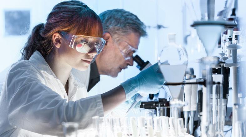 Células tronco no cenário na oftalmologia